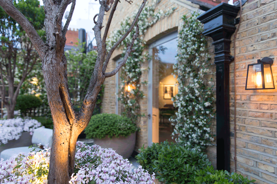 flowers on roof garden with brick facade